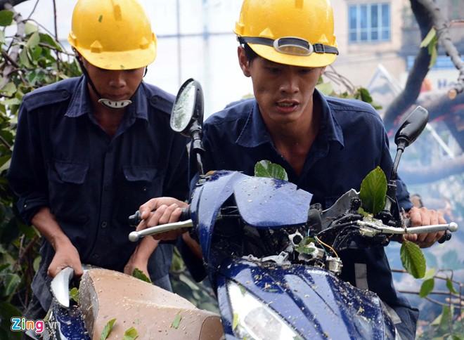 Hàng loạt cổ thụ ở Sài Gòn bật gốc đè bẹp ôtô, xe máy - Ảnh 13