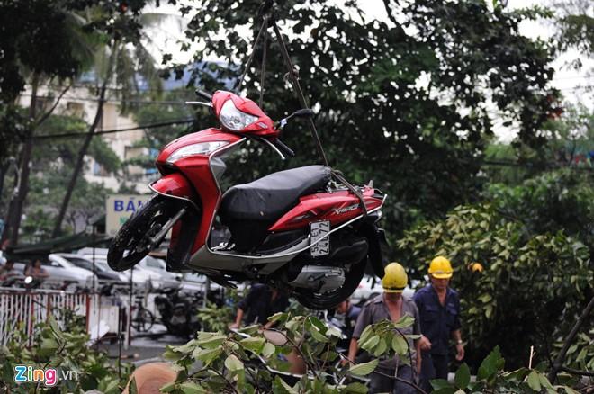 Hàng loạt cổ thụ ở Sài Gòn bật gốc đè bẹp ôtô, xe máy - Ảnh 11
