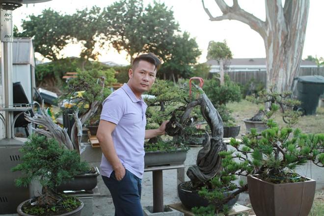 Bằng Kiều khoe vườn bonsai tiền tỷ ở Mỹ - Ảnh 5