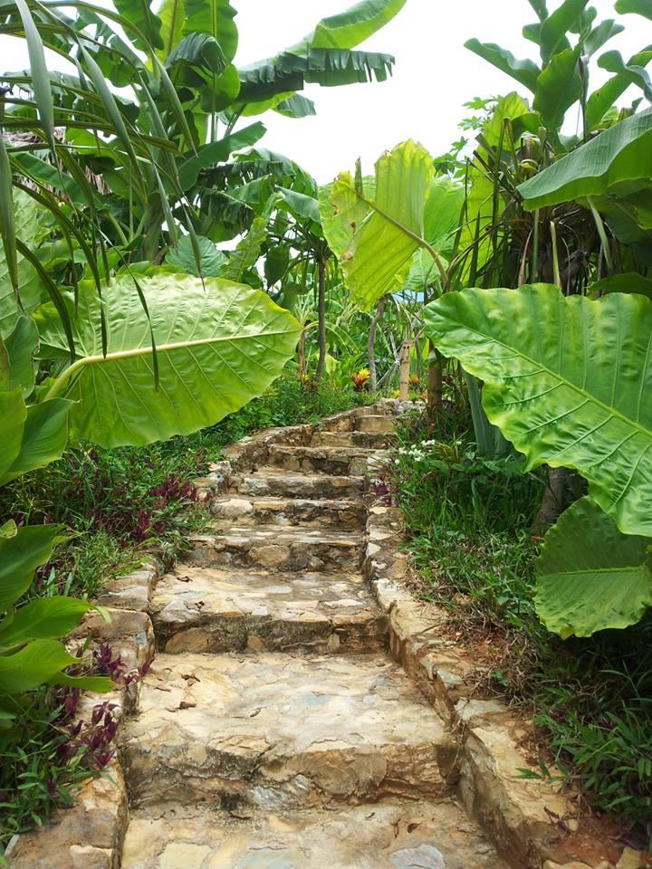 Khu nghỉ dưỡng sinh thái giữa núi rừng Mai Châu - Ảnh 7