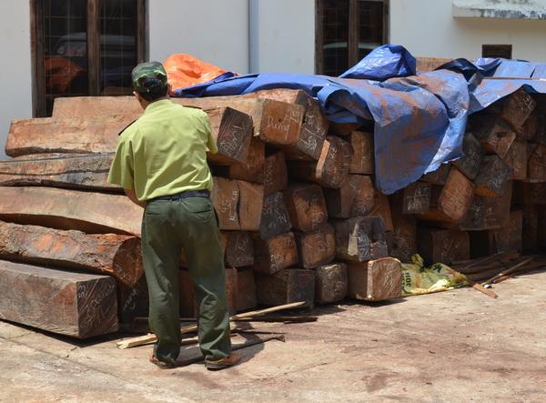 Gia Lai: Tịch gần 2 tấn gỗ hương không rõ nguồn gốc - Ảnh 1