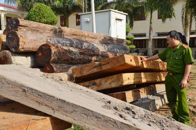 """Gia Lai: Phát hiện hơn 22m3 gỗ """"lậu"""" trong tình trạng """"vô chủ"""" - Ảnh 1"""