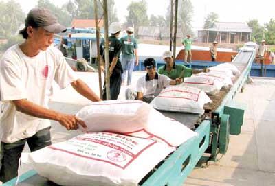 Gạo Việt sẽ thống lĩnh thị trường trong nhiều tháng tới? - Ảnh 1