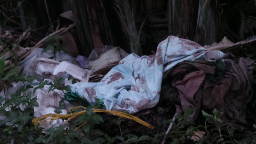Nghi án giết người đốt xác gây rúng động tại TP.HCM - Ảnh 1