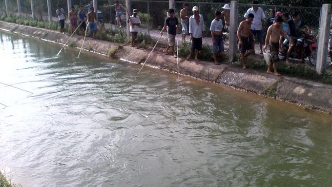 """Hồ Dầu Tiếng xả nước, cá mè """"khủng"""" trôi về TP.HCM - Ảnh 2"""