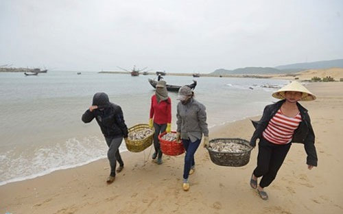 Bộ TN-MT yêu cầu thực hiện báo cáo quan trắc môi trường biển ở miền Trung - Ảnh 1