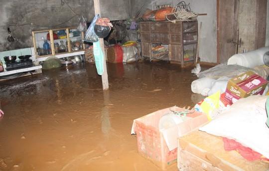 Vỡ đập chứa bùn: Bùn thải trải dài gần 1km xuống khu vực dân cư - Ảnh 1