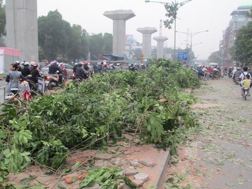 Lá phổi xanh của Thủ đô tiếp tục bị đốn hạ vì đường sắt trên cao - Ảnh 8