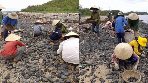 Quảng Ngãi: Dân bỏ đồng ruộng, đổ xô ra biển khai thác đá đen - Ảnh 2