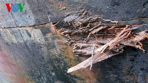 Biển Đông 4/6: Thêm một chủ tàu cá trình báo bị tàu TQ tấn công - Ảnh 2