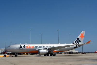 Jetstar Pacific lại hủy chuyến bay vì... chim - Ảnh 1