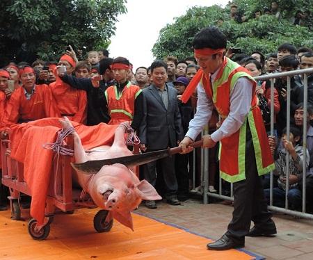 """Tranh cãi """"nảy lửa"""" nên hay không chấm dứt lễ hội chém lợn - Ảnh 1"""