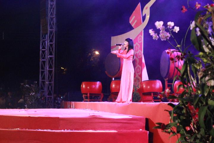 Đồng Nai: Háo hức ngắm pháo hoa chào xuân 2015 - Ảnh 2
