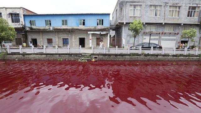 Hãi hùng dòng sông chuyển màu máu chỉ sau 1 đêm - Ảnh 1