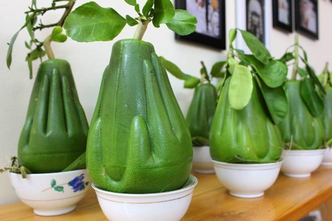 Những trái cây cực độc trong ngày tết của Việt Nam - Ảnh 1