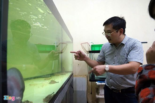 Trại sam cảnh tiền tỷ của chàng luật sư Hà thành - Ảnh 14