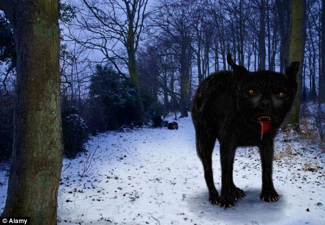 Giải mã bí mật loài chó ma huyền thoại với lời nguyền chết người - Ảnh 3