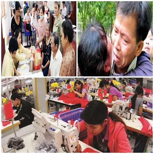Những điểm nhấn pháp lý ấn tượng của Việt Nam năm 2014 - Ảnh 1
