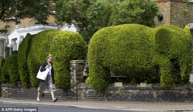 Rao bán hàng rào hình con voi để làm từ thiện - Ảnh 4