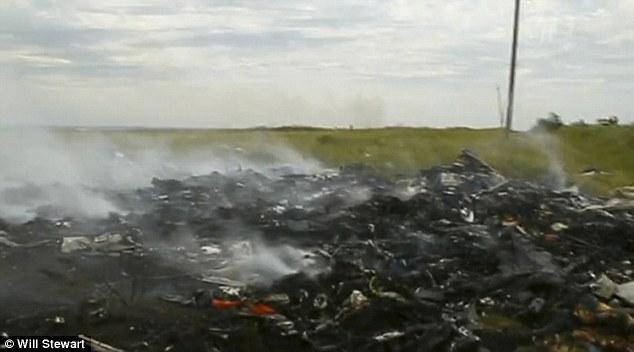 Công bố thêm nhiều hình ảnh hiện trường khi MH17 vừa rơi - Ảnh 1