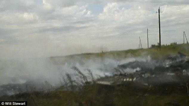 Công bố thêm nhiều hình ảnh hiện trường khi MH17 vừa rơi - Ảnh 2