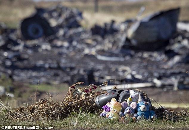 Công bố thêm nhiều hình ảnh hiện trường khi MH17 vừa rơi - Ảnh 7