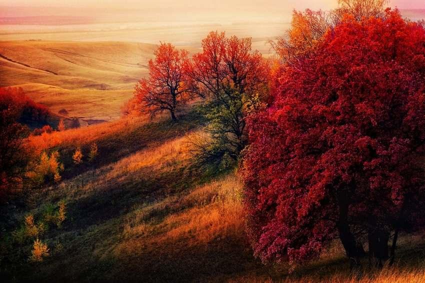 """15 """"thiên đường"""" mùa thu đẹp nhất trên thế giới - Ảnh 13"""