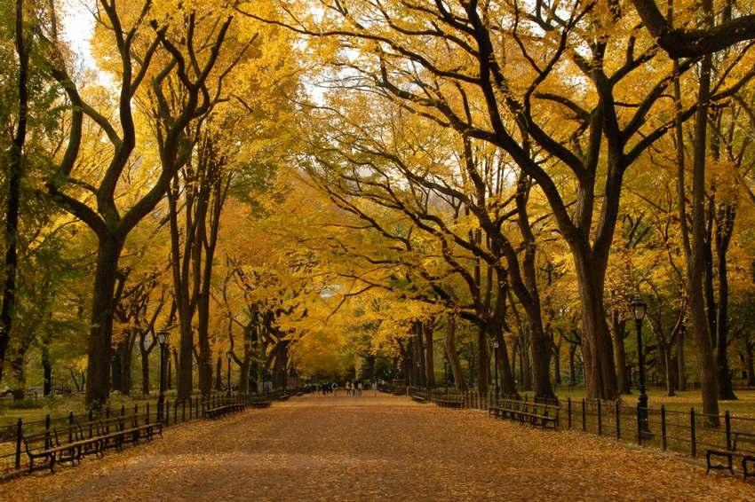 """15 """"thiên đường"""" mùa thu đẹp nhất trên thế giới - Ảnh 3"""