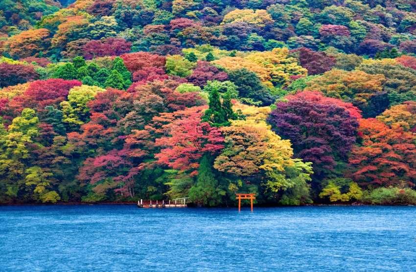 """15 """"thiên đường"""" mùa thu đẹp nhất trên thế giới - Ảnh 5"""
