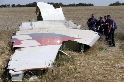 Mẹ nạn nhân MH17 kiện Ukraine đòi bồi thường 1 tỷ USD - Ảnh 1