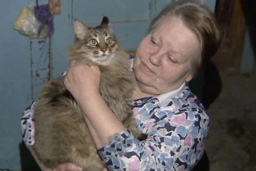 """Cảm động mèo hoang """"cứu sống"""" em bé bị bỏ rơi - Ảnh 2"""