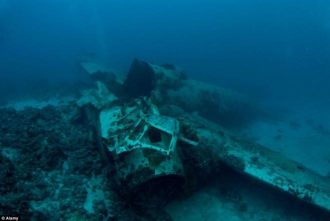 Nghĩa địa tàu chiến đầy ám ảnh trong lòng Thái Bình Dương - Ảnh 5