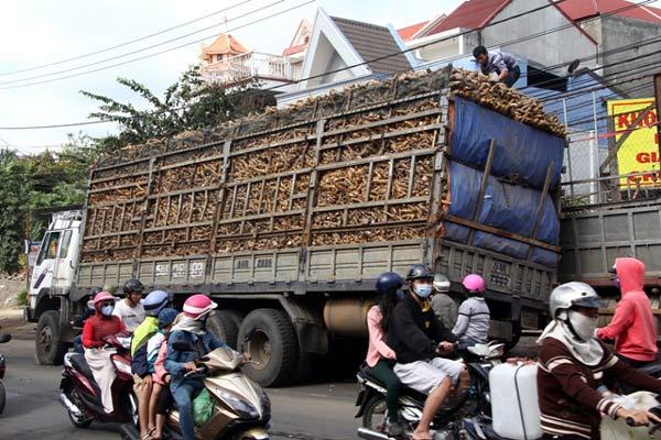 Xe tải chở sắn làm sập cầu giữa trung tâm thành phố - Ảnh 1