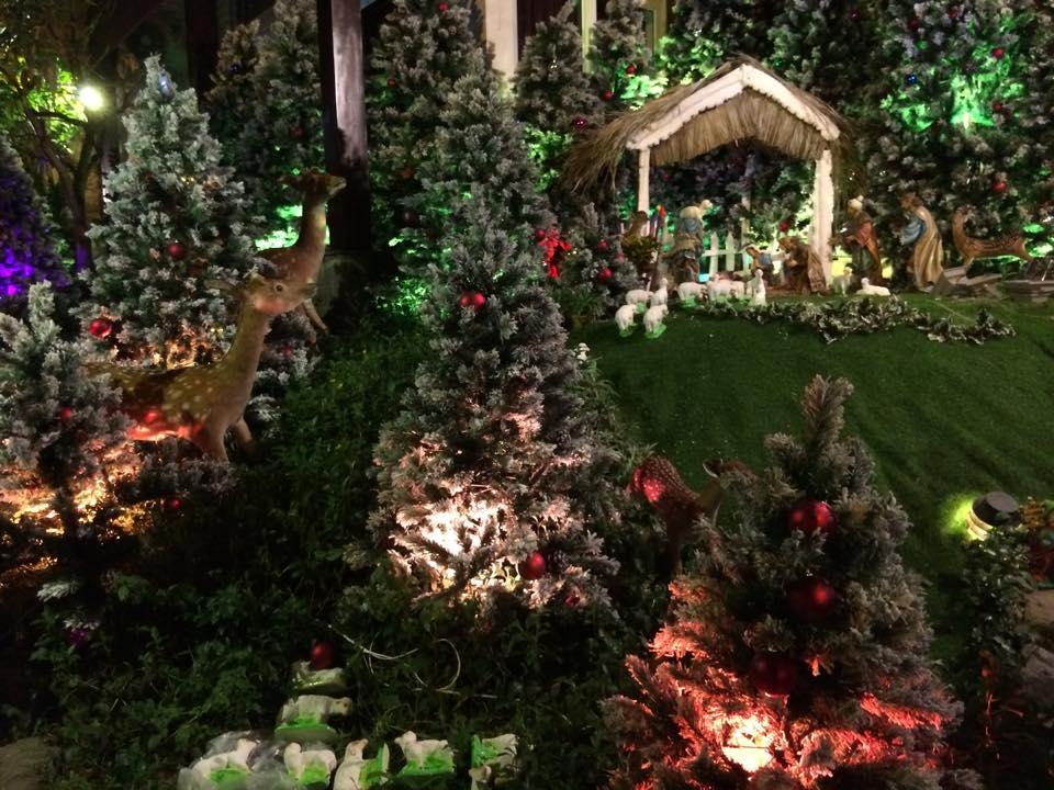 Noel 2014 lung linh, huyền ảo trong căn nhà triệu đô của Đàm Vĩnh Hưng - Ảnh 11