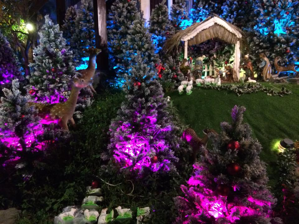 Noel 2014 lung linh, huyền ảo trong căn nhà triệu đô của Đàm Vĩnh Hưng - Ảnh 12