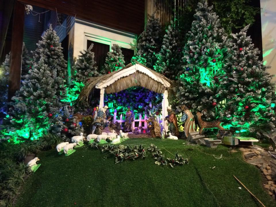 Noel 2014 lung linh, huyền ảo trong căn nhà triệu đô của Đàm Vĩnh Hưng - Ảnh 13