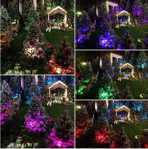 Noel 2014 lung linh, huyền ảo trong căn nhà triệu đô của Đàm Vĩnh Hưng - Ảnh 2