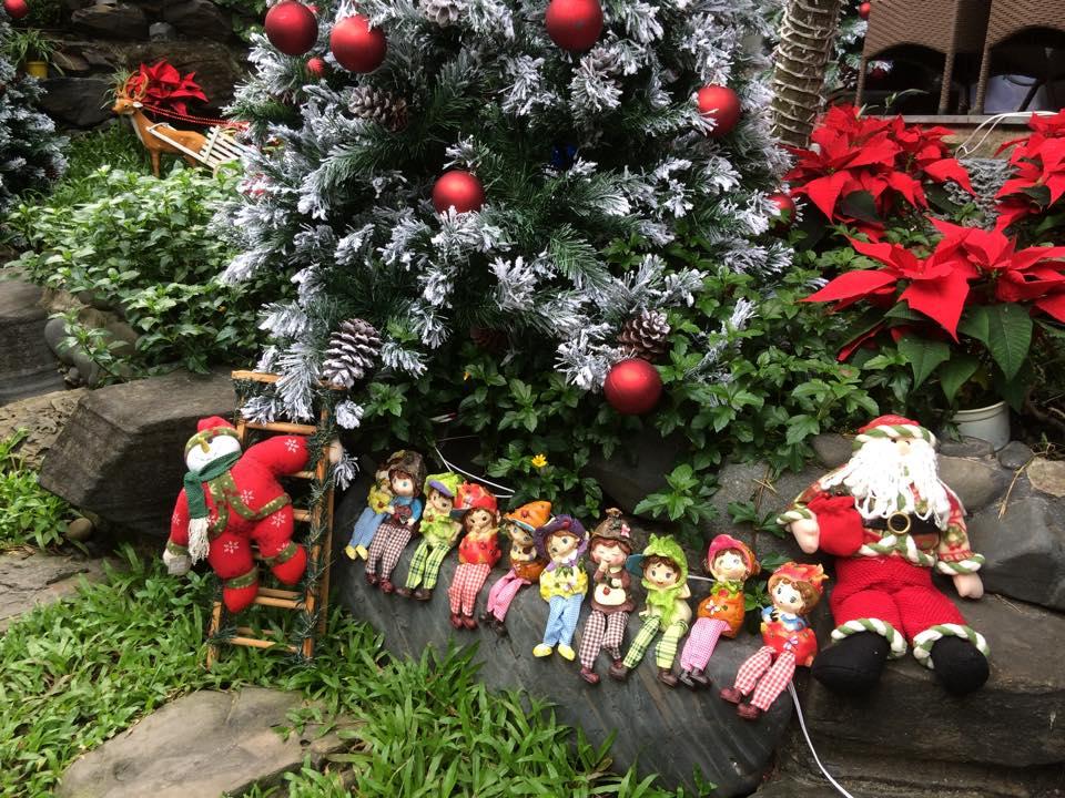 Noel 2014 lung linh, huyền ảo trong căn nhà triệu đô của Đàm Vĩnh Hưng - Ảnh 7