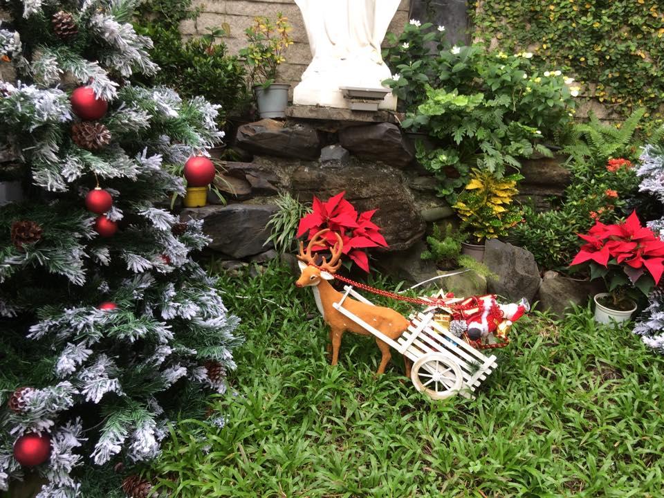 Noel 2014 lung linh, huyền ảo trong căn nhà triệu đô của Đàm Vĩnh Hưng - Ảnh 9