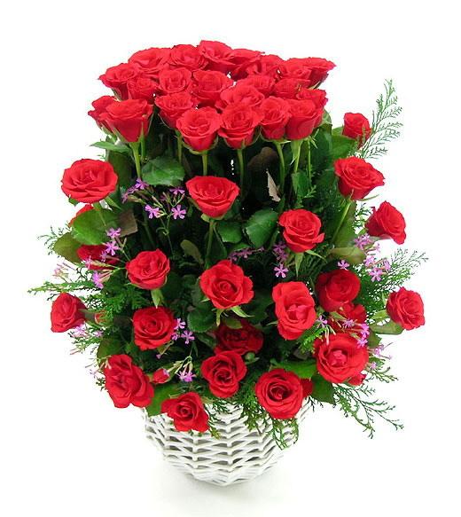 Vì sao tặng hoa hồng trong ngày lễ tình nhân? - Ảnh 1