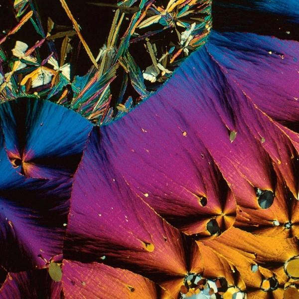 Cận cảnh cơ thể người tuyệt đẹp qua lăng kính hiển vi - Ảnh 7