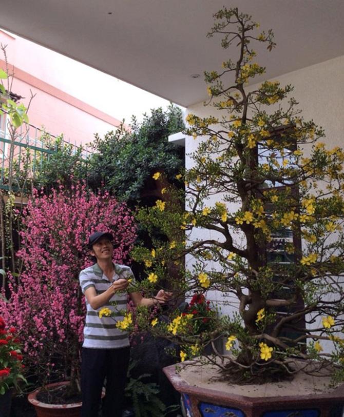 Muôn kiểu đón Tết Ất Mùi 2015 của sao Việt - Ảnh 15