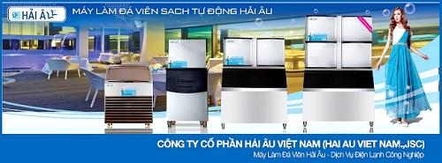 Máy làm đá Hải Âu: Bước đột phá của thị trường đá viên sạch Việt Nam - Ảnh 1