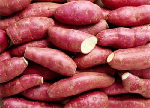 Đừng ăn khoai lang khi mắc bệnh thận! - Ảnh 1