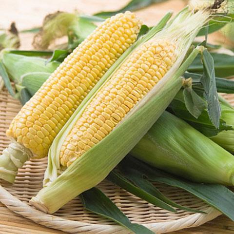 Tăng khả năng miễn dịch trong mùa đông bằng rau xanh - Ảnh 4