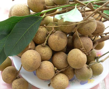 7 loại trái cây phụ nữ mang thai không nên ăn - Ảnh 1