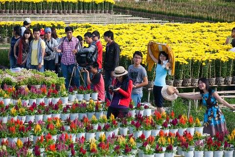 Điểm danh những địa điểm chụp ảnh Tết Ất Mùi đẹp nhất Sài Gòn - Ảnh 6