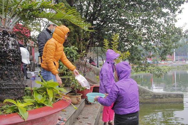 Hà Nội: Người dân đội mưa đi thả cá chép vàng tiễn ông Táo - Ảnh 3