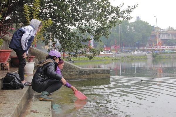 Hà Nội: Người dân đội mưa đi thả cá chép vàng tiễn ông Táo - Ảnh 1