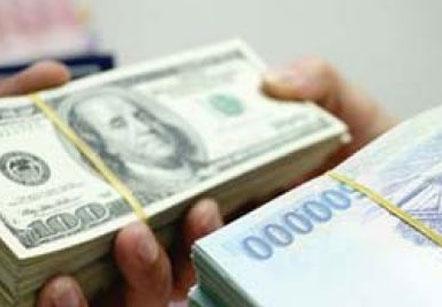 NHNN không điều chỉnh tỷ giá bất chấp giá đô la Mỹ sắp chạm trần - Ảnh 1